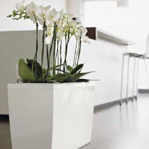 Maceteros para oficinas macetas jardineras y maceteros - Maceteros modernos de interior ...