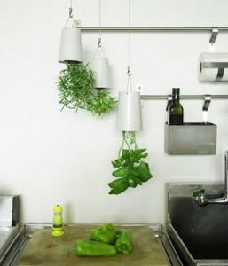 sky-planter