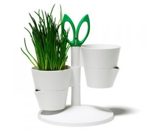 herb_stand_02