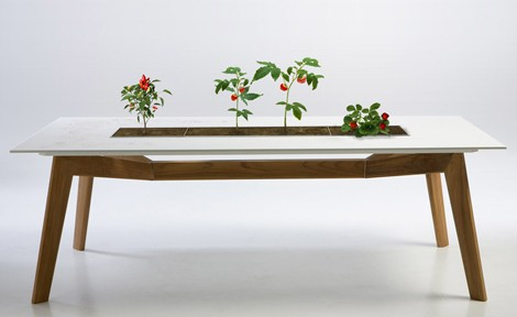 escho-mesa-macetero-rosis