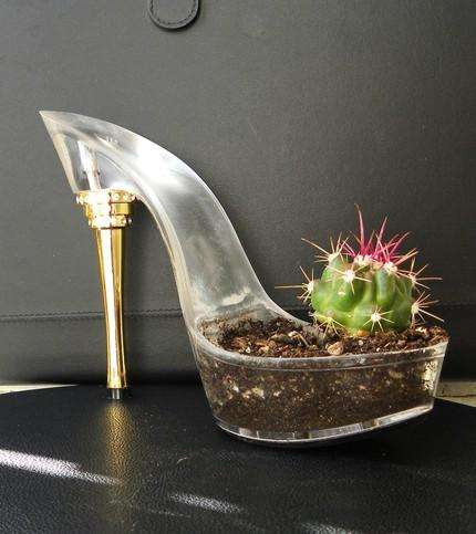 cactus-shoes