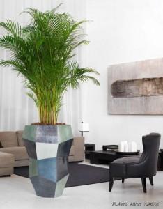 Plantsfirstchoice2 - Maceteros modernos de interior ...