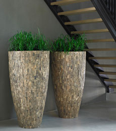 Cemani Wood